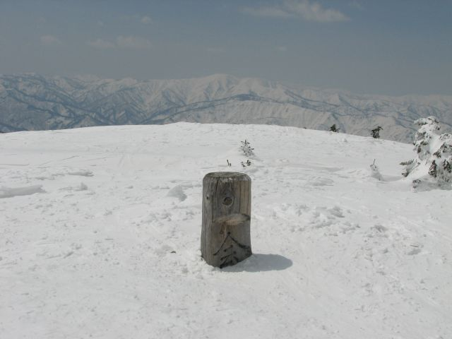 2008040519
