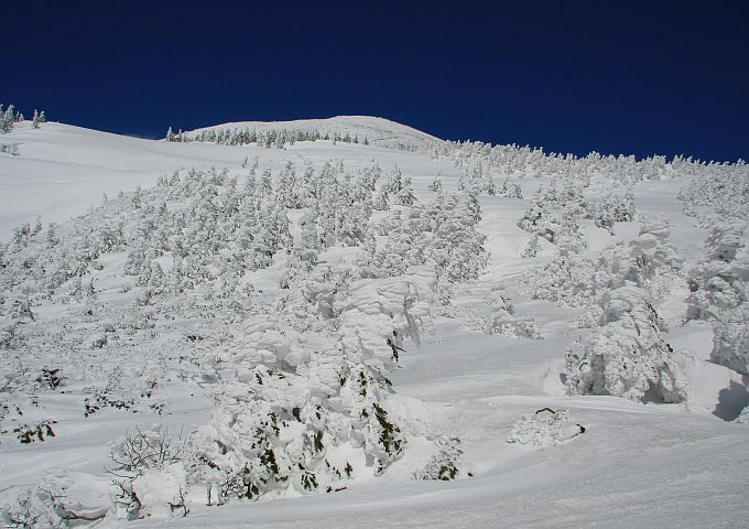 2009032914