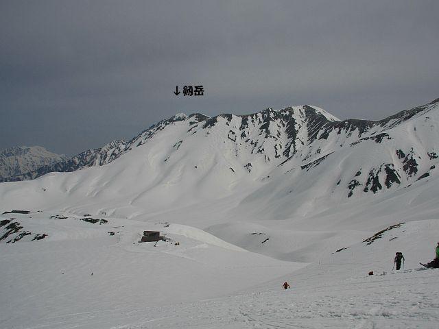 200904207