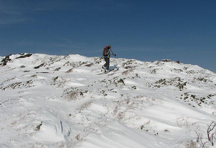 2010013118