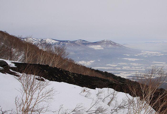 2010022818