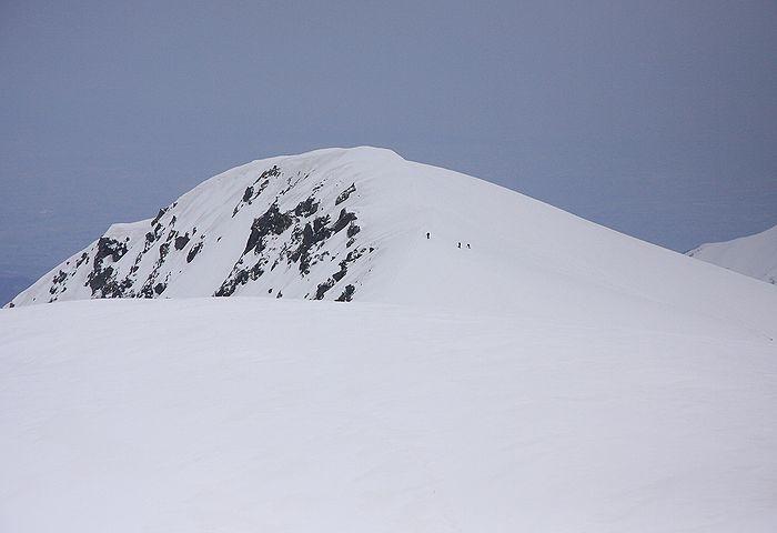 2010041917