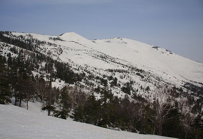 201005057