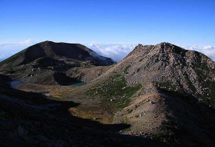 2010092529