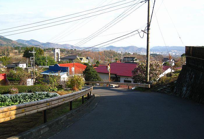 2010121225