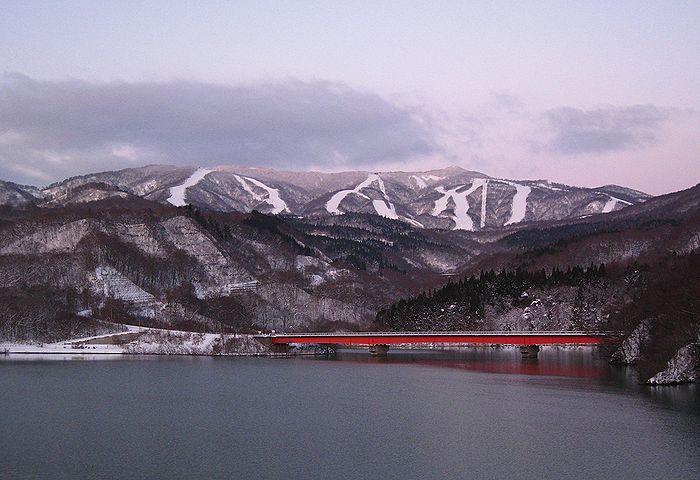 201012188