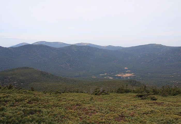 2011110530